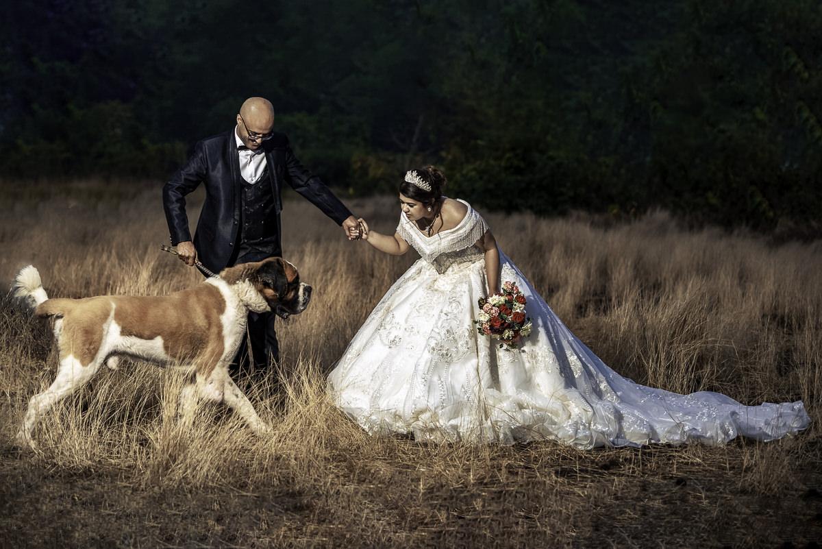 Photooneil Photography - Wedding Photographers at post wedding Donapaula, Goa pets
